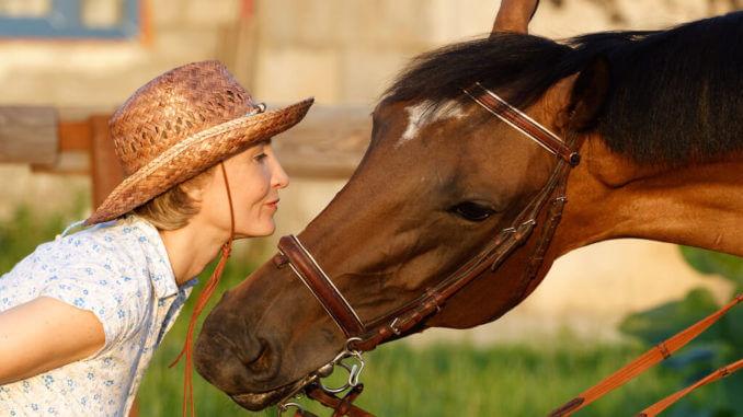 Pferdediebstahlversicherung