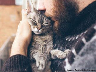 Nahaufnahme von Mann mit Bart kuschelt Katze