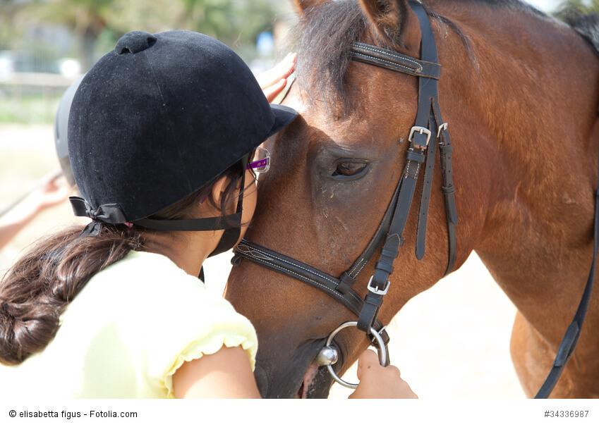 Ein Mädchen küsst ein Pferd auf die Blesse